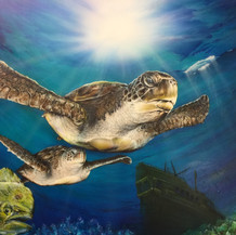 Sea Turtle III   Airbrush Acrylic   18 x 24