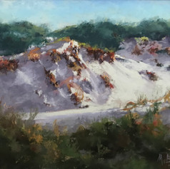 Dunes of Watersound | Pastel |  9 x 12 | Framed |