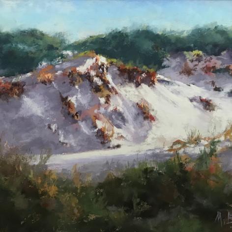 Dunes of Watersound   Pastel    9 x 12