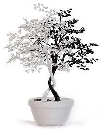 yin-yang-trees-1.jpg