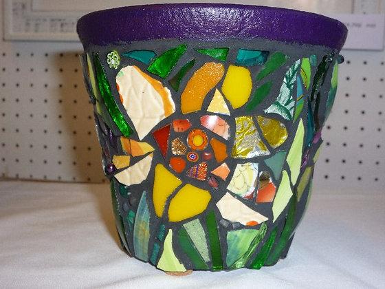 Terracotta Flower Pot - Daffodils