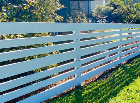 37/52: Google helped me paint my fence
