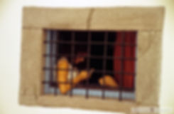 Μύρινα 1.jpg