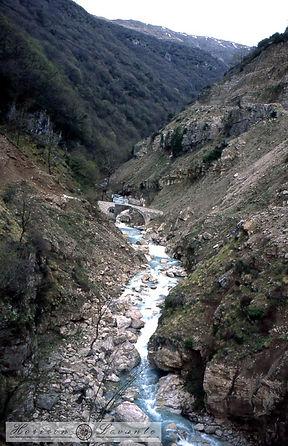 Ελάτη-Βουλγαρέλι 1996023.jpg