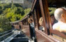 3 Γέφυρα De Chirico τρενάκι Πηλίου.JPG
