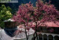 Κόνιτσα005.jpg