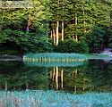 Λίμνες Μουτσάλια Γράμμος