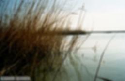 Έβρος Ξάνθη 1999 007.jpg