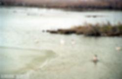 Έβρος Ξάνθη 1999 019.jpg