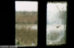 Έβρος Ξάνθη 1999 037.jpg