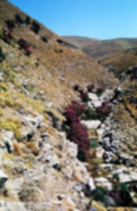 Κατσαίτης 6.jpg