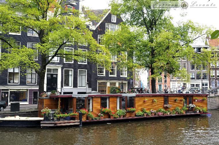 Amsterdam-3.jpg