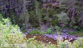 Picture-037.jpg