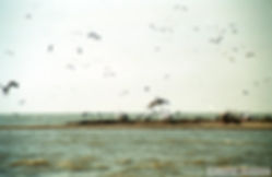 Έβρος Ξάνθη 1999 051.jpg