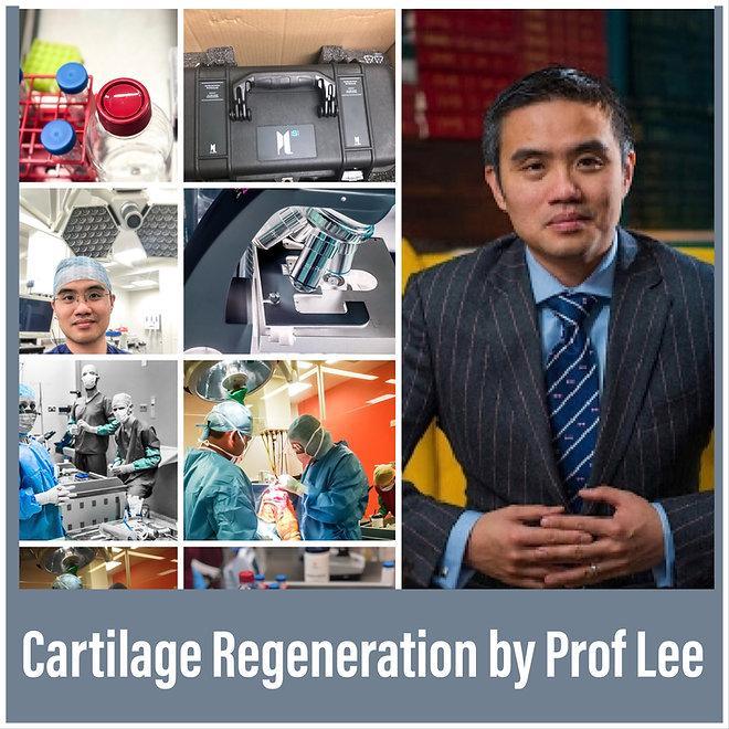 Prof Lee