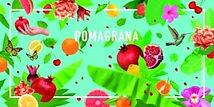 Pomagrana label.jpg