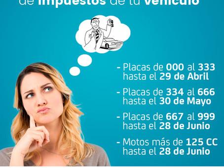 Conozca los plazos para pagar los impuestos vehicular del 2020 en Cali y Valle del Cauca