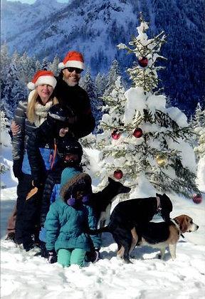 Christmas - Snow Dogs