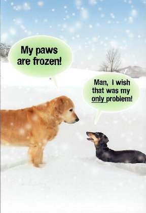 Christmas - Frozen Paws