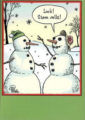 Christmas - Stem Cells