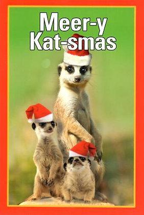 Christmas - Meer-y Kat-smas