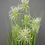 Thumbnail: Artificial grass with flower
