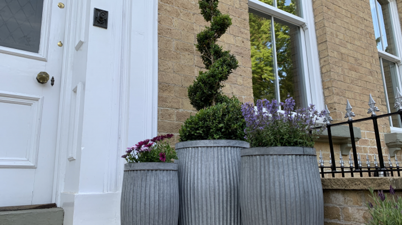 Galvanised set of Planters