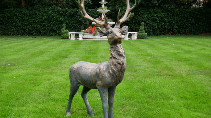 Large Stag