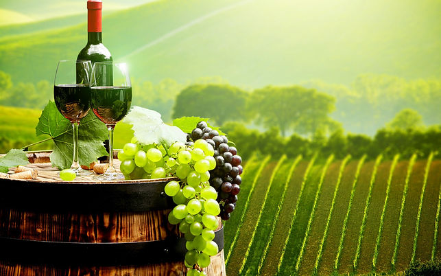 247-2476058_wine-and-grapes.jpg