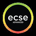 2019-ecse-Advanced.png