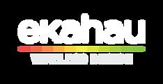 ekahau-logo-the-wifi-connection.png