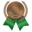 bronze-icon-40920.png
