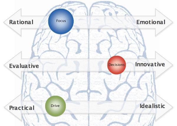 brain Picture 1.jpg