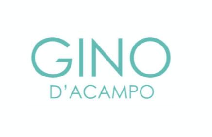 gino logo.png