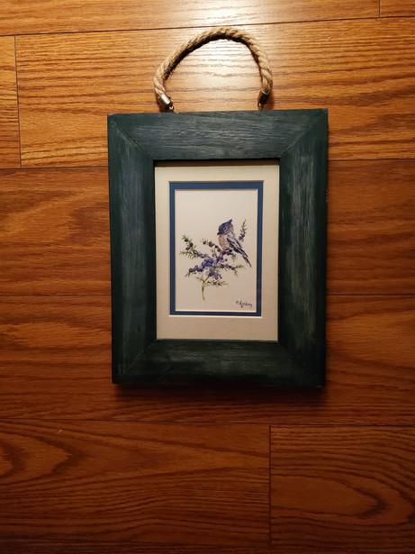 Tufted Titmouse Blue Bird