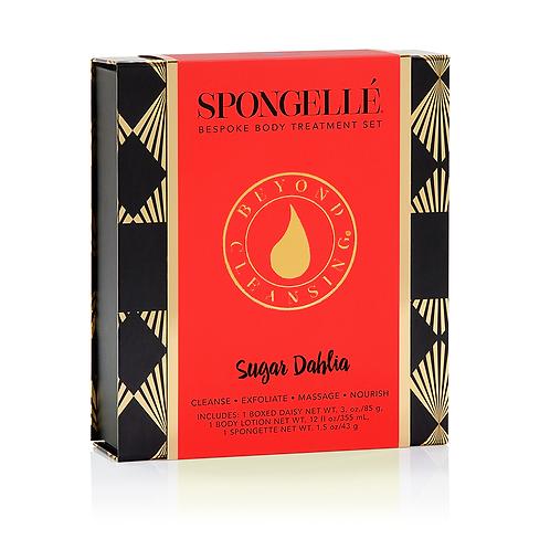 Sugar Dahlia Boxed Flower Gift Set