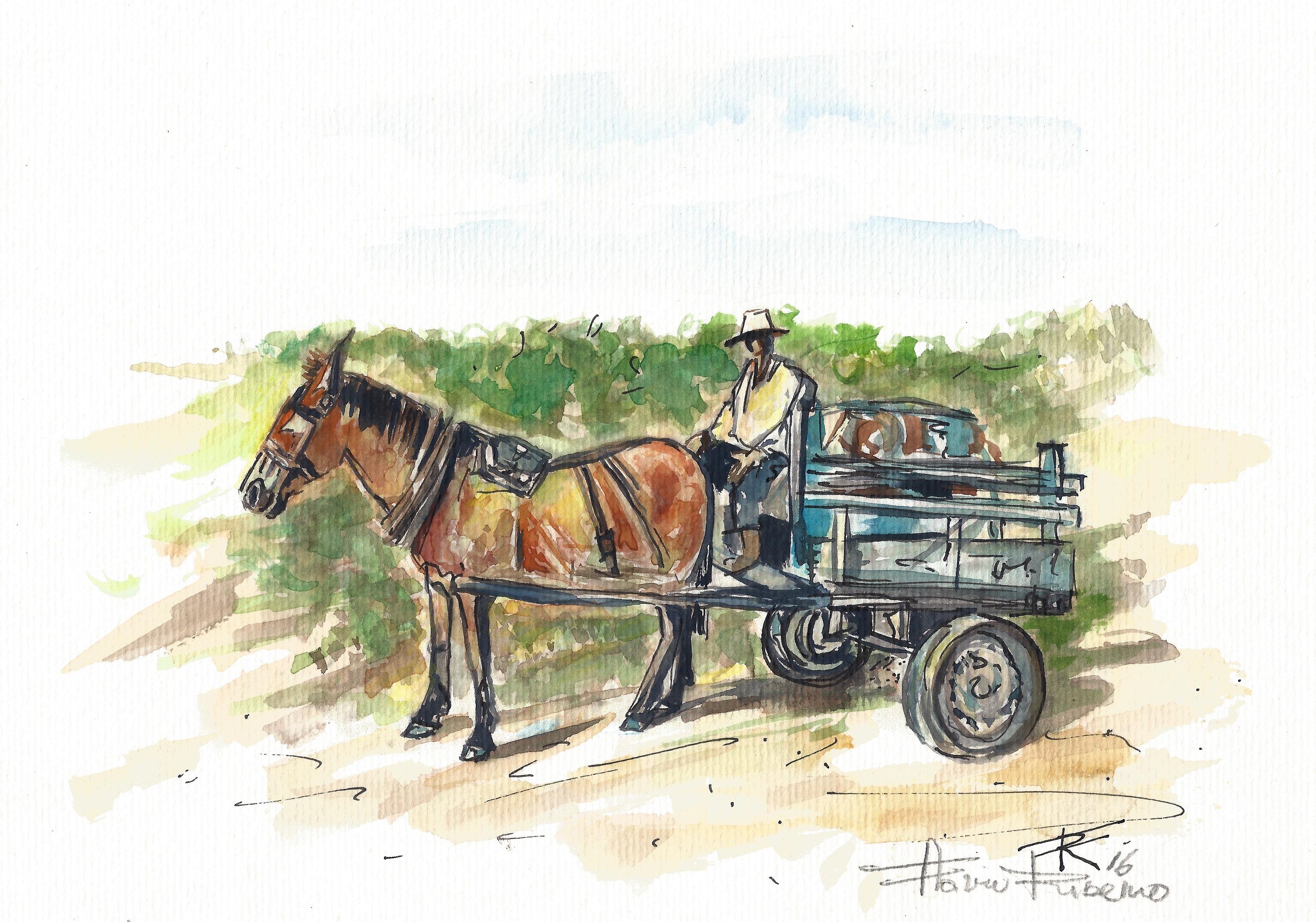 O carroceiro