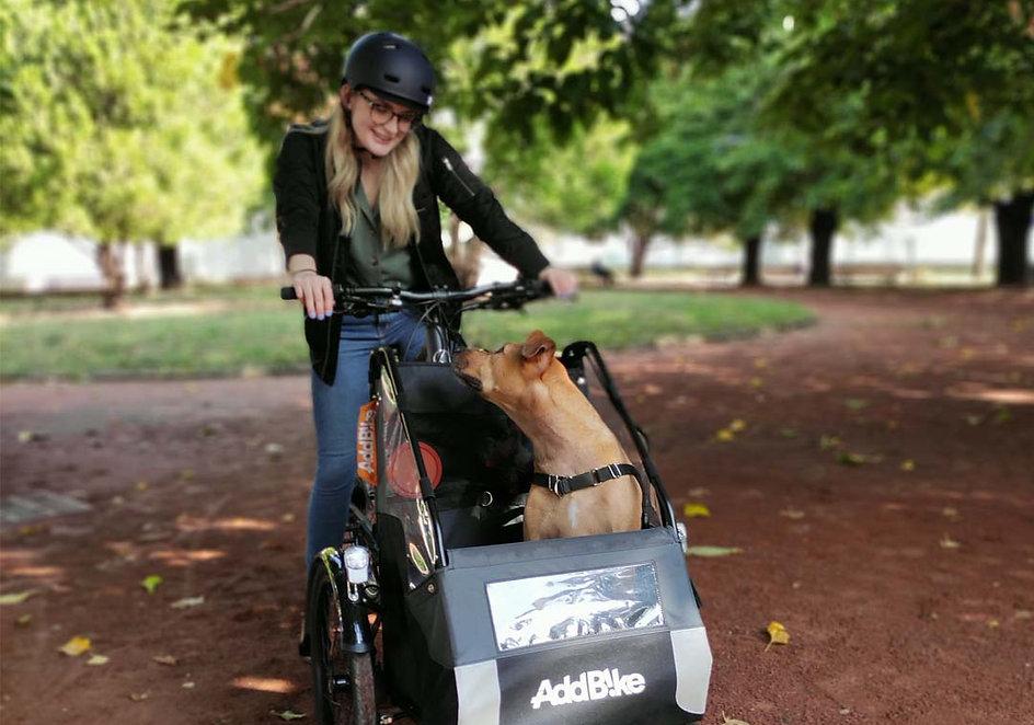 remorque-velo-pour-chien-carrydog.jpg