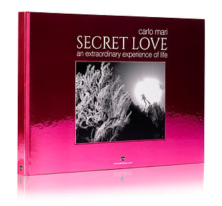 Secret_Cover.jpg