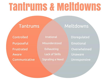 Tantrums and Meltdowns ...  Do you know how they are different?