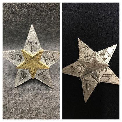 Texas Star Insignia