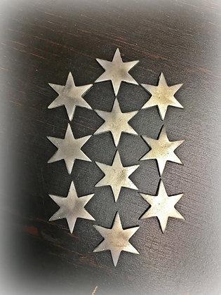 Florida Cherokee Rose Six Point Star