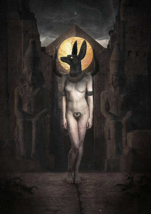 Anubis II-web.jpg