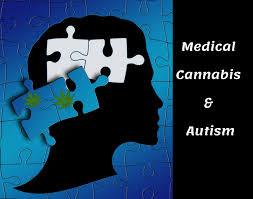 טיפול בקנבינואידים באנשים עם ASD: סקירת מחקרים