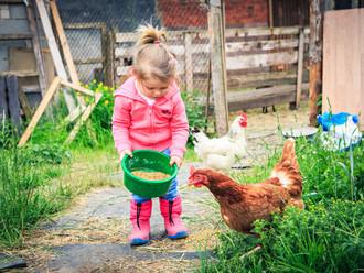 Become a Farm Friend!