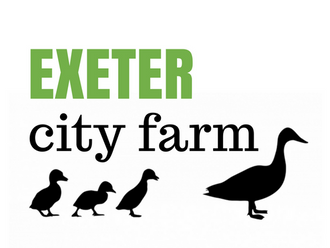 Pop-up farm at Exeter Respect