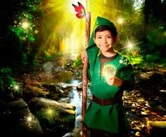 The Little Elf