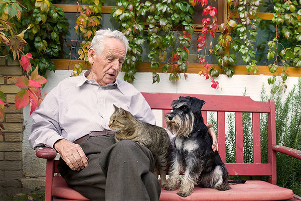 older man with pets, estate planning with your pet,put your pet in your will, providing for your pet after you're gone, what happens to your pet after you die, pet protection plan