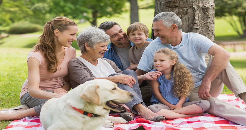 What Is Estate Planning top estate attorney trust and estate lawyer or estate planning