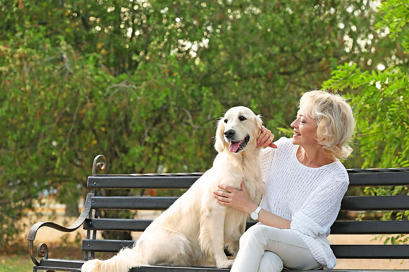 estate planning with your pet,put your pet in your will, providing for your pet after you're gone, what happens to your pet after you die, pet protection plan